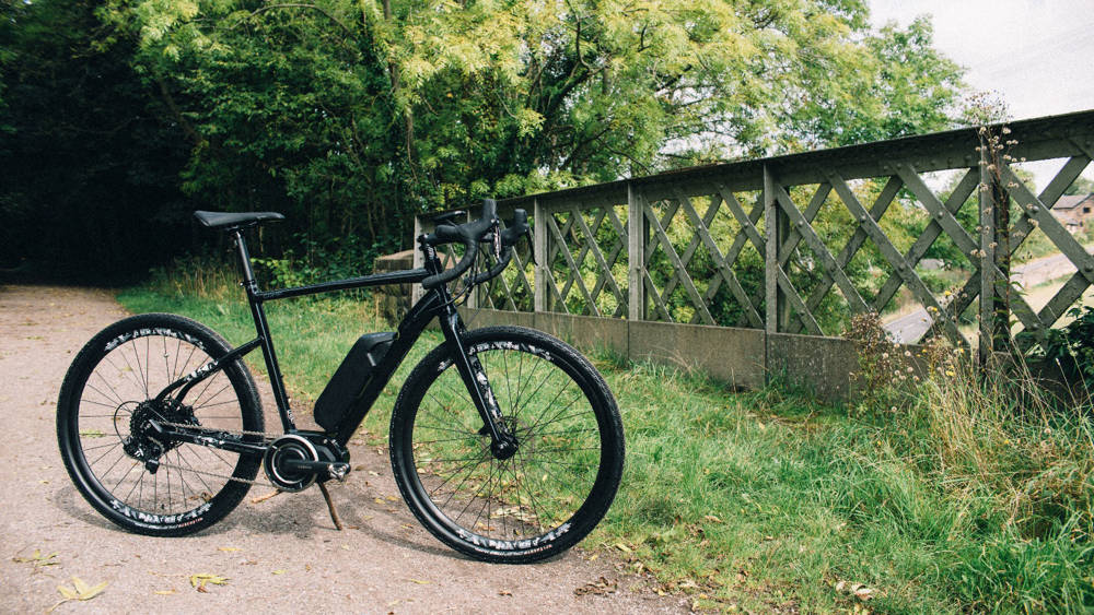 raleigh mustang comp electric